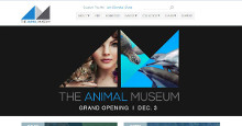 Client: The Animal Museum